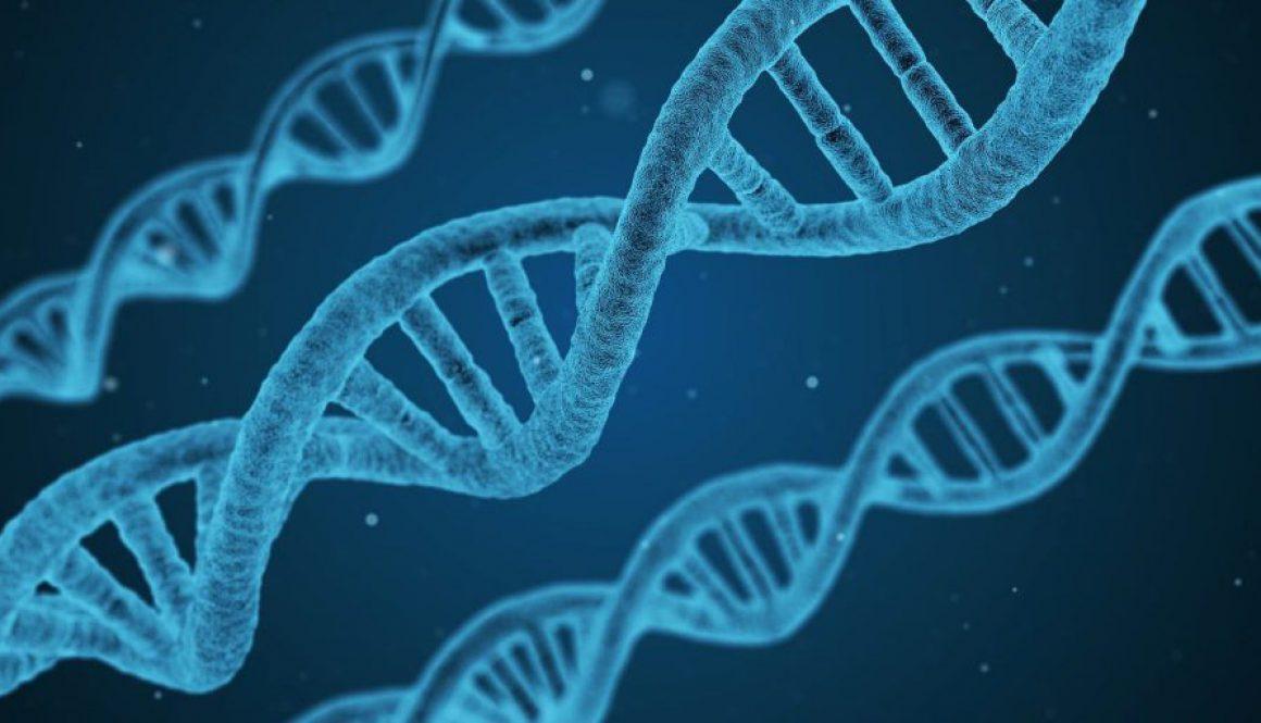 dna-biology-strand